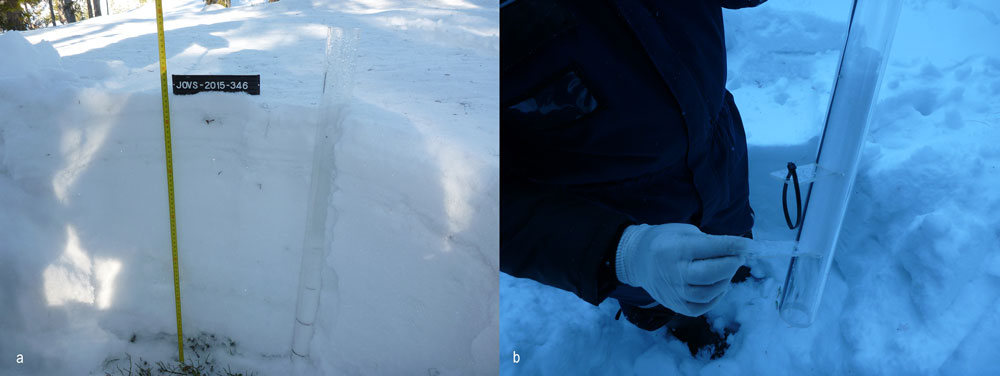 Figure 2. a) An acrylic tube is pushed into a snow pack to collect a sample. The thickness of the snow is about 65 cm and the sample material is taken from the 10–20 cm layer above the soil surface. b) Transverse flaps keep snow in the tube and help to obtain the sample from the right section. Photos: Jorma Valkama, GTK.