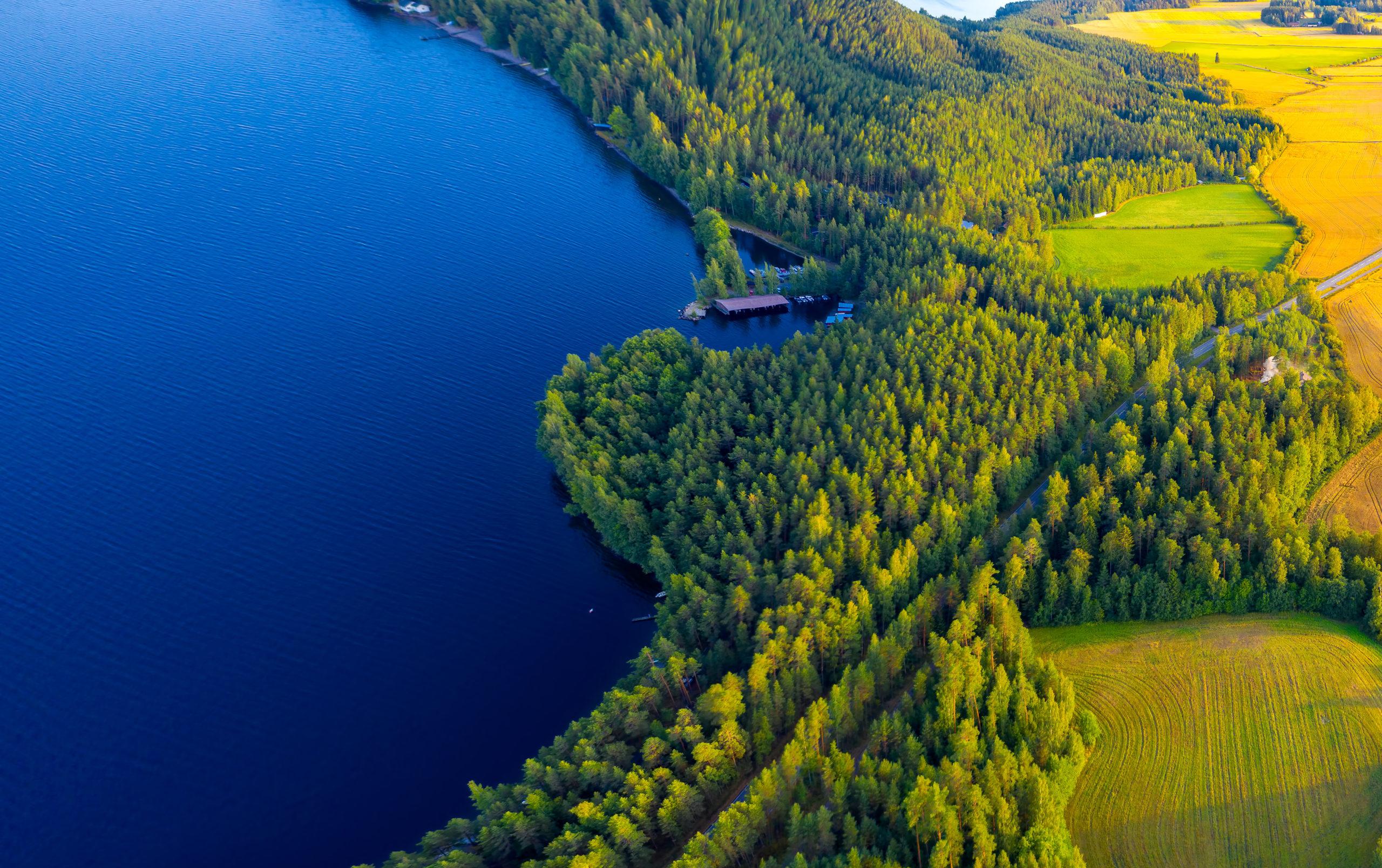 Ilmakuva Pulkkilanharjulta, Päijänteen kansallispuistosta. Maisemassa sininen järvi, peltoja ja metsää aurinkoisena kesäpäivänä.