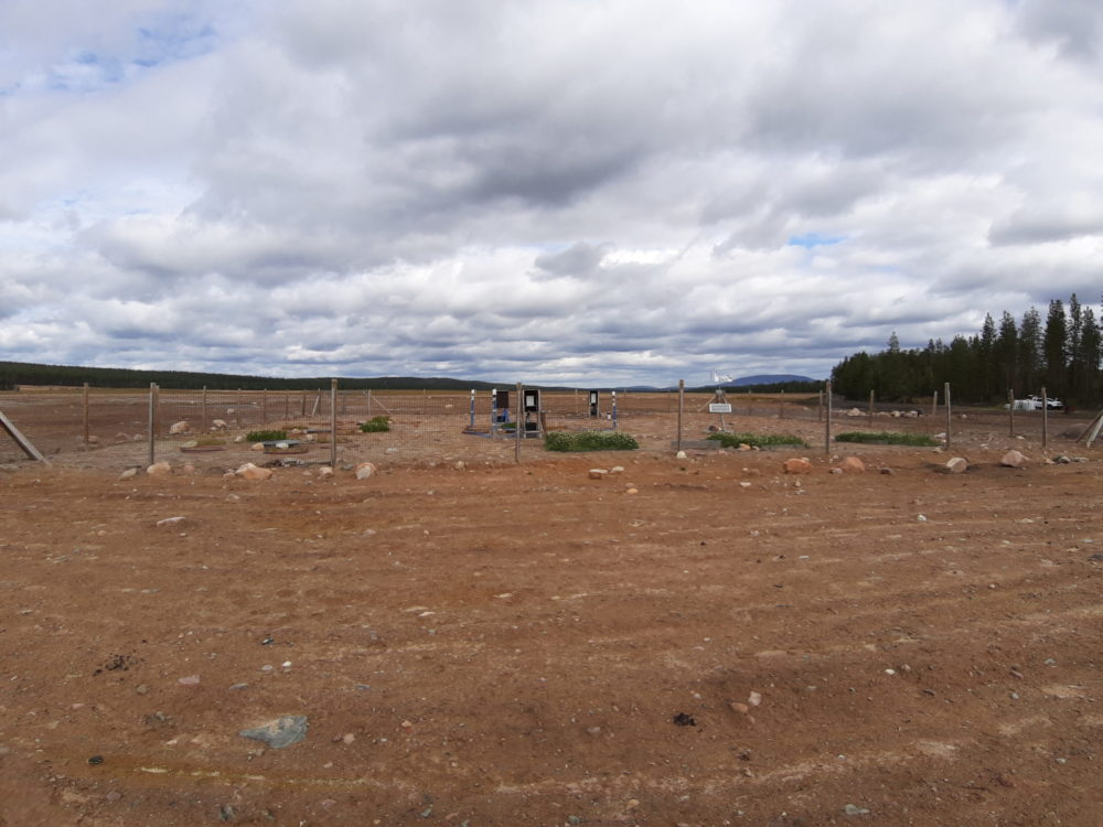 Fenced test area covered with till at Rautuvaara. Luke's lysimeters on the left, GTK's lysimeters at the back, three datalogger stations in the middle and three grid tests at the front, with a weather station nearby. Yllästunturi is in the background. Photo: Anna Tornivaara, GTK.