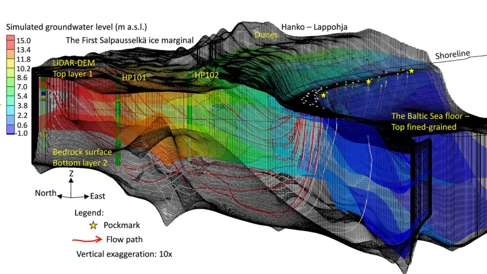 Fig. 3. 3D visualization of model grids illustrating groundwater flow paths (red and white lines). Groundwater flow is directed from the left toward the submarine discharge area on the shore platform and on the platform slope (pockmarks and white dots). The groundwater flow is confined on the seaward side by the fine-grained sediment unit, resulting in steep upward flow paths.