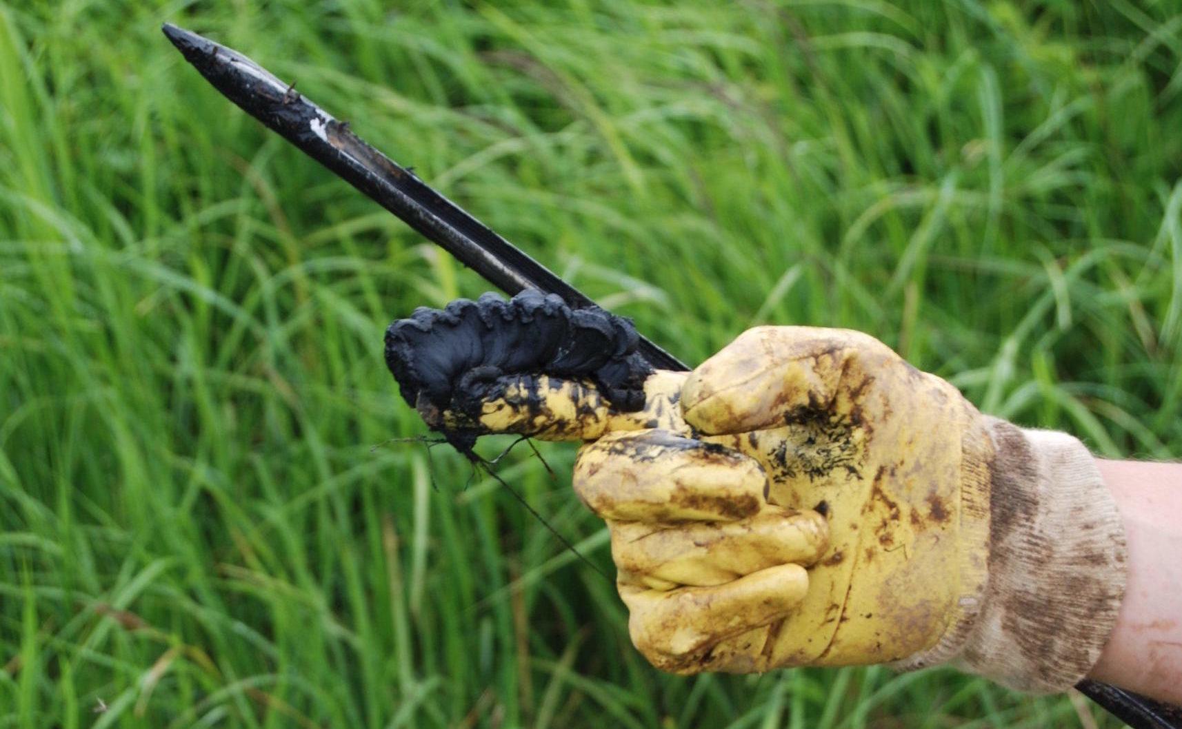 Näytteenottokaira ja tyypillistä pikimustaa sulfidisavea sormissa.